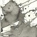 Löwe auf Nasenbär