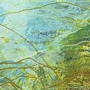 fons, Detail (1)