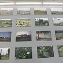 Trophäen - Bilder aus der Reihe Grenzland Nr. 1- 168
